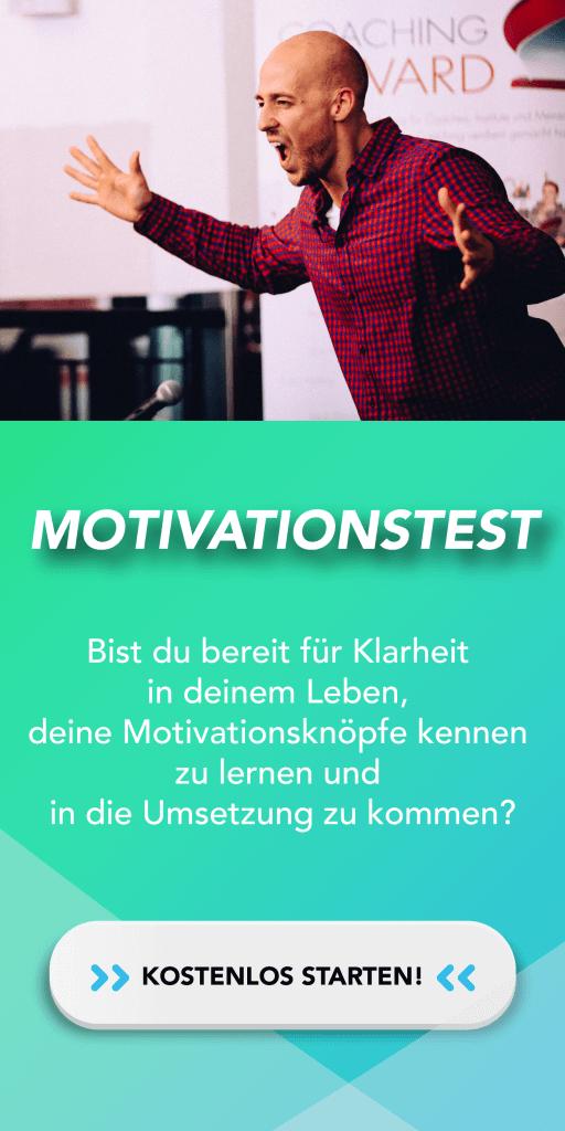 Motivationstest