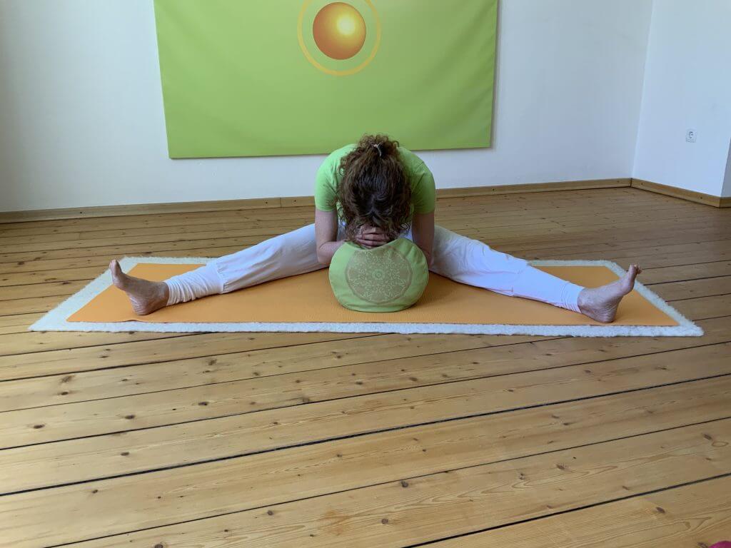 Asana Yoga Libelle