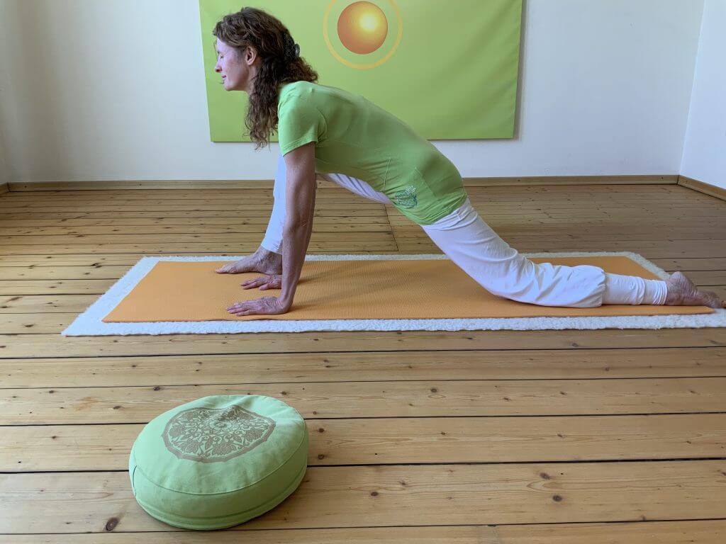 Asana Yoga Drache