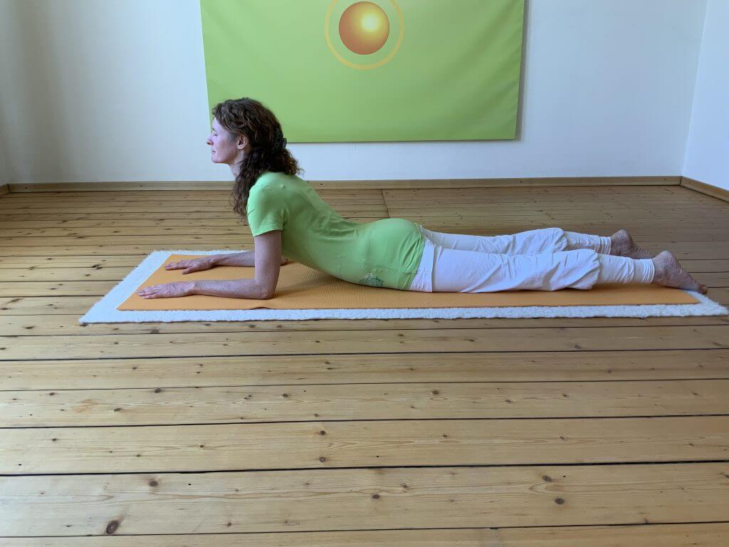 Asana Yoga Shinx